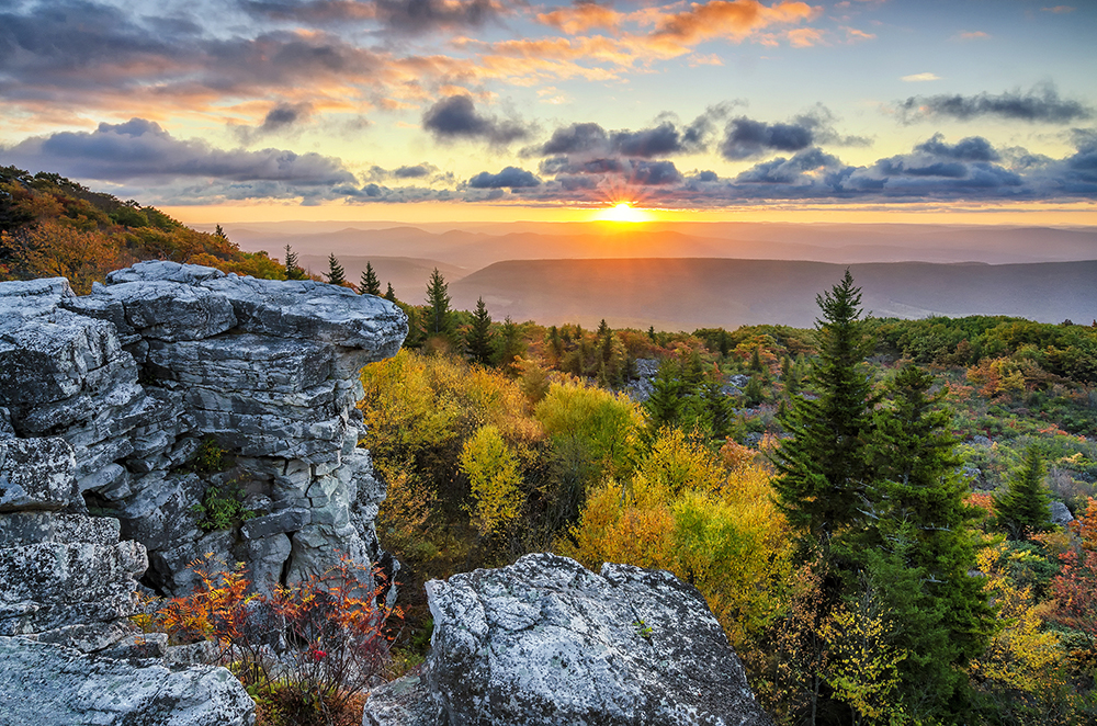 Dolly Sods Wilderness in West Virginia.