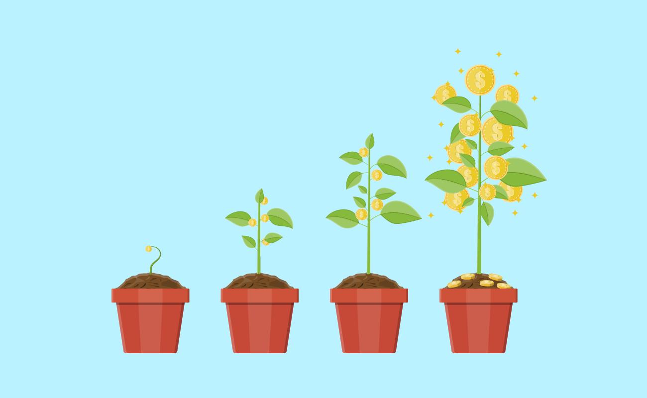 Money Growing Plants.