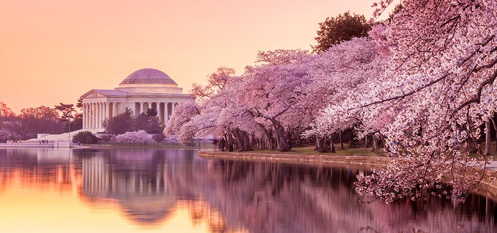 Jefferson Memorial.