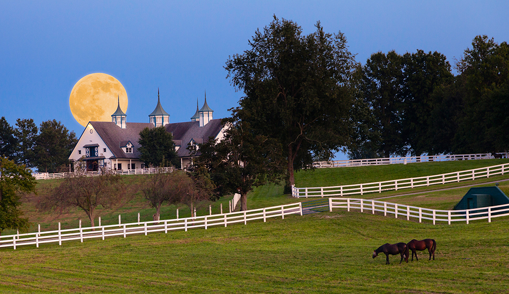 Moonrise at Horse Farm.