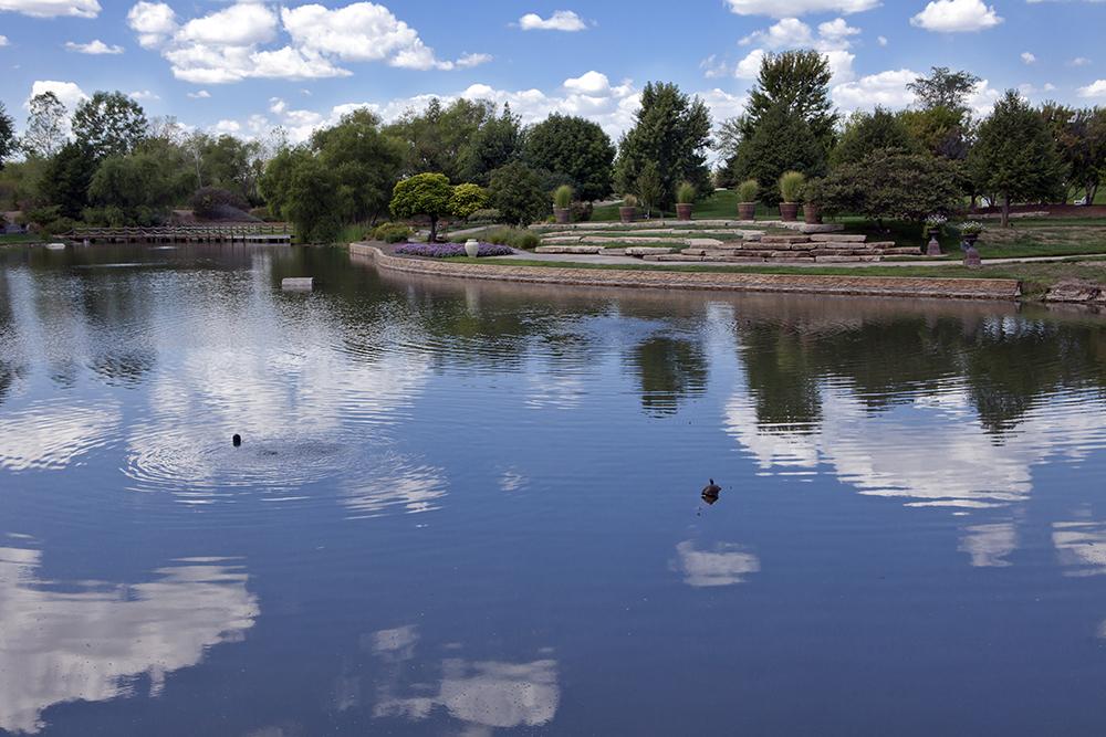 Pond in Overland Park.
