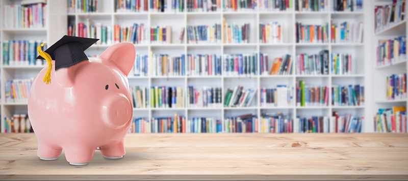 Piggy Bank in front of bookshelves.